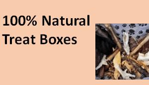 Treat Boxes